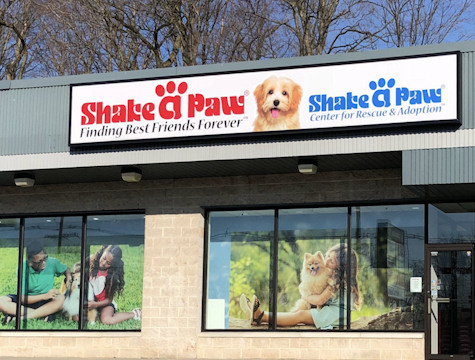 Shake A Paw Rescue and Adoption Center : The Shake A Paw
