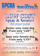 Low Cost Neuter Clinic